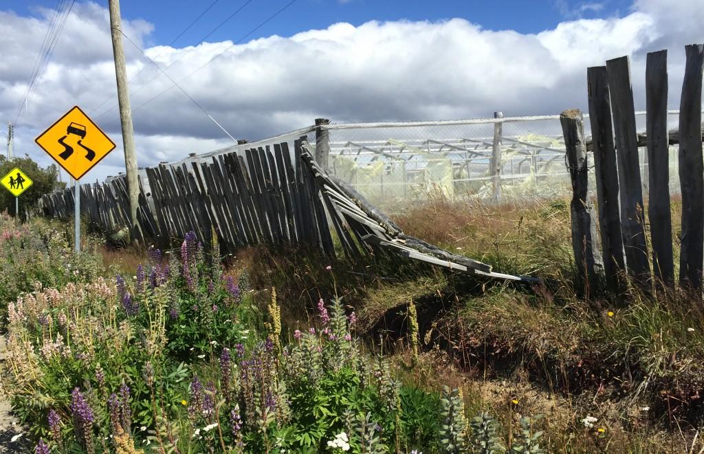 Twisties Patagonia